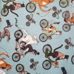 Cat Tails Bicycle Race Aquifer